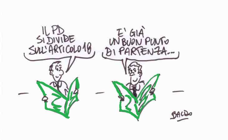 vignetta (2)